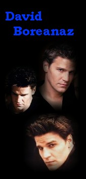 David Boreanaz as Angel(us)/Liam