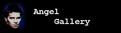 Angel Gallery