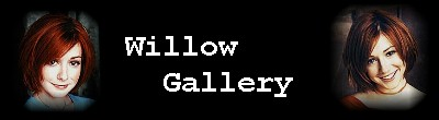 Willow Gallery